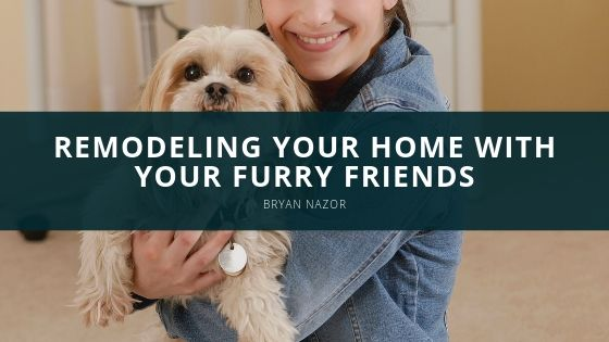 Bryan Nazor Shares Tips on Remodeling Your Home With Your Furry Friends in Mind